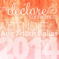 The Declare Conference!